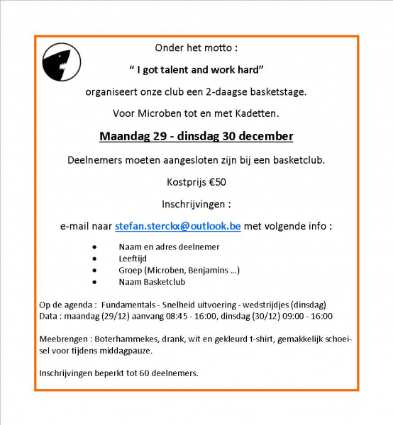 2-daagse Basketstage - 29/30 december